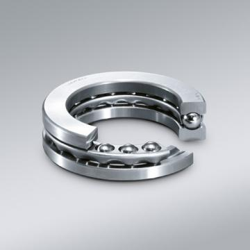 Natr10-PP-a Roller Follower Yoke Type Track Rollers Bearing